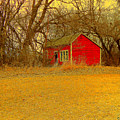 Red Shack by Curtis Tilleraas