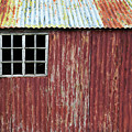 Red Shed by Tim Gainey