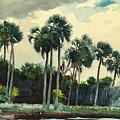 Red Shirt Homosassa Florida by Winslow Homer