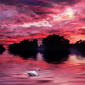 Red Sky At Night by Jessica Jenney