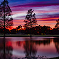 Red Sky by Mike Harlan