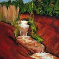 Red Spring by Hal Sadler