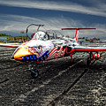 Red Star Viper United States Side by Bob Welch