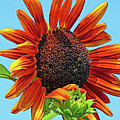Red Sunflowers-adult And Child by Regina Geoghan