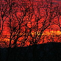 Red Sunrise Over The Ozarks by Nadine Rippelmeyer