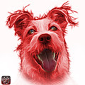 Red Terrier Mix 2989 - Wb by James Ahn