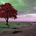 Red Tree by Munir Alawi