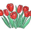 Red Tulips  by Irina Sztukowski