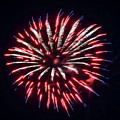 Red White And Blue Fireworks by Cynthia Woods