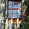 The Red Window by Sandi OReilly