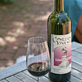 Red Wine Nectar by Liz Santie