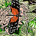 Red Winged Butterfly by Iris Posner