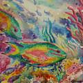 Redband Parrotfish by Deborah Younglao