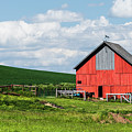 Reddest Barn In Palouse. by Usha Peddamatham