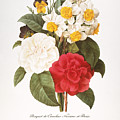 Redoute: Bouquet, 1833 by Granger
