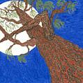Redwood Tree by Rachel Zuniga