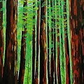 Redwoods Majestic 2 by Mike Caitham