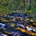 Reeder Creek II by David Patterson