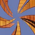 Reeds 2 by Tim Allen