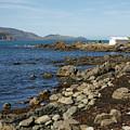 Reef Bay Boathouse by Brandy Herren
