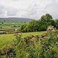 Reeth Views by Smart Aviation