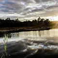 Reflect by John Gagnon