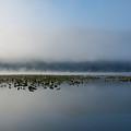 Reflected Mists by Idaho Scenic Images Linda Lantzy