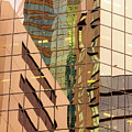 Reflecting Eagle 4 by Werner Padarin