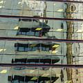 Reflecting Eagle 5 by Werner Padarin