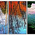 Reflecting On Autumn - Triptych by Steve Harrington