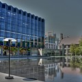 Reflecting Pond U Of C Law School by David Bearden