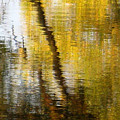 Fall Reflections 3 On Jamaica Pond by Giora Hadar