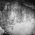 Reflection by Ashwini Nirale