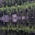 Reflection by Gunnar Lundquist