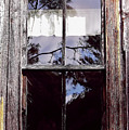Reflection - In - The - Window  by D Hackett