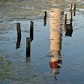 Reflection by John Steiger