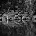 Reflection  by Josiane Smith