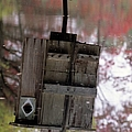 Reflection Of Wood Duck Box In Pond by Erin Paul Donovan
