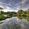 Reflection On The Poudre River by Shane Linke