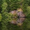 Reflection by Rick Takagi