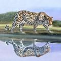 Reflection Stalk by Wycliffe Ndwiga