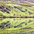 Reflections Alaska  by Chuck Kuhn