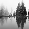 Reflections And Fog by Idaho Scenic Images Linda Lantzy