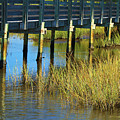 Reflections And Sea Grass by Roena King
