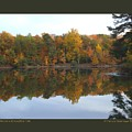 Reflections At Boughton Park by Patricia Overmoyer