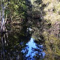 Reflections At Camps Creek  by Warren Thompson