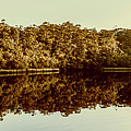 Reflections From Cockle Creek  by Jorgo Photography - Wall Art Gallery