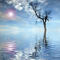 Reflection's by Gordon Bowdery