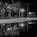 Reflections II - Bw by Christopher Holmes