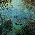 Reflections IIi by Rick Nederlof